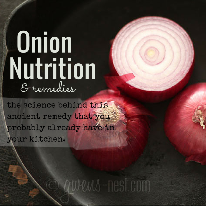 onion nutrition img