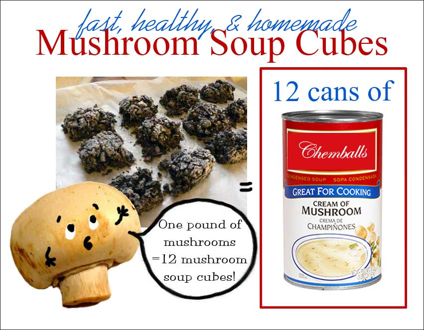 Concentrated Cream of Mushroom Soup Cubes