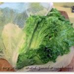 washing-lettuce (14)