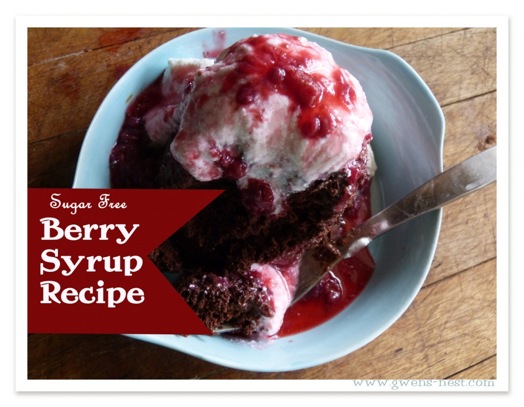 Sugar Free Berry Syrup Recipe