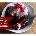 Sugar Free Berry Syrup Recipe-img
