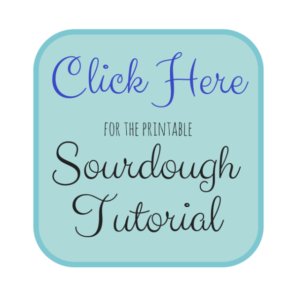sourdough tutorial img
