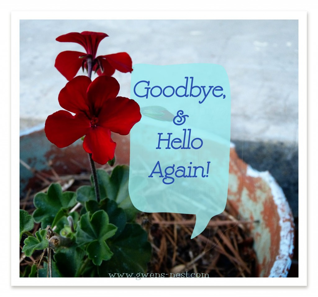 Goodbye & Hello Again