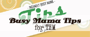 Are you SUPER busy like me? Here are my best tips to stay on the Trim Healthy Mama plan during your busy seasons of life.