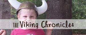 True tales of my son...a modern day Viking child.