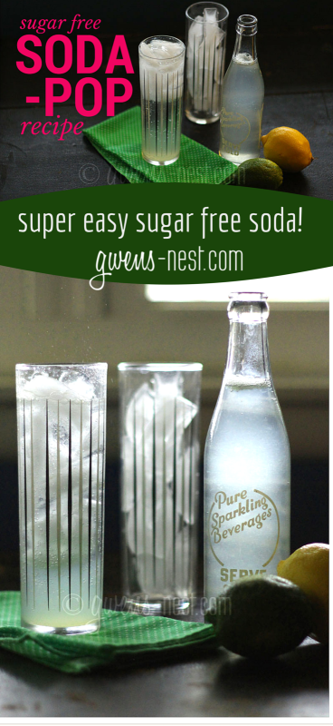 this sugar free *super* easy recipe makes AMAZINGLY delicious soda! Click for the printable recipe.