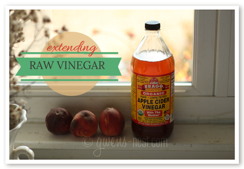 Extending Raw Vinegar img