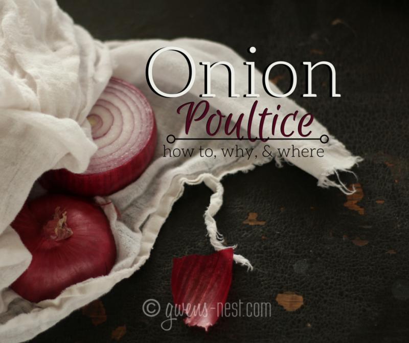 The Onion Poultice