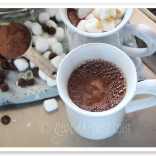 hot cocoa mix recipe img (2)