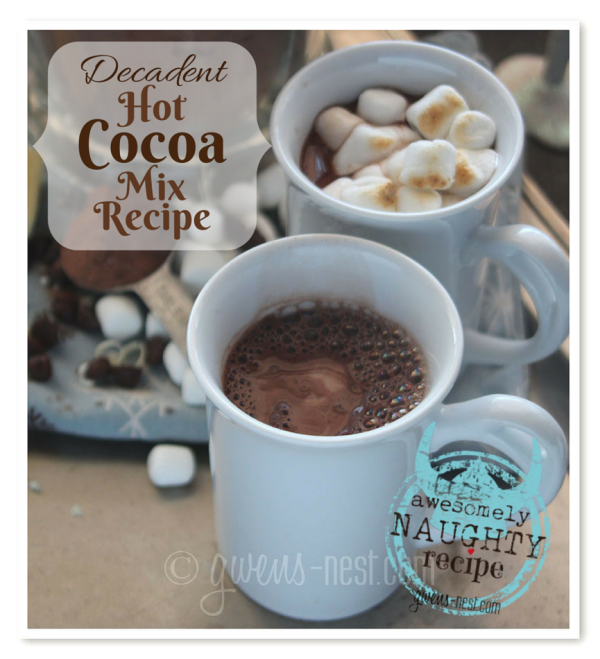 decadent hot cocoa mix recipe-naughty but worth it!