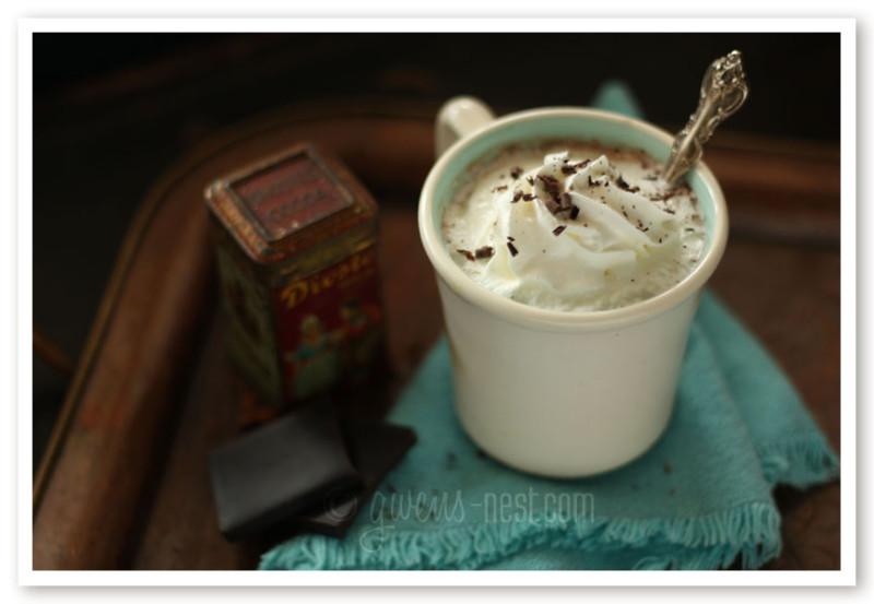 hot cocoa sugar free recipe (2)