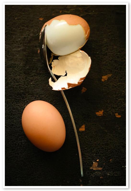 peel boiled eggs (1 of 1)-2