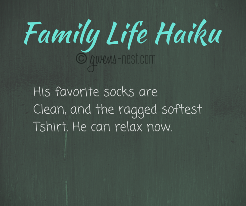 Family Life Haiku socks