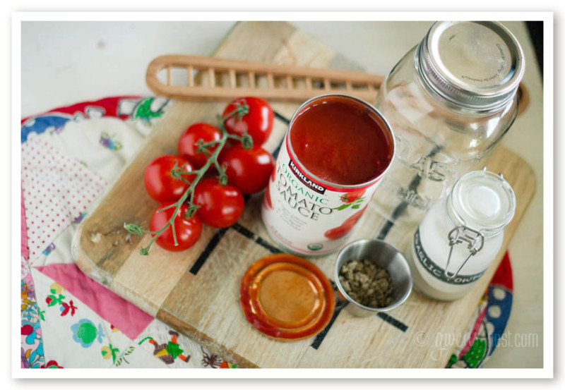 EASIEST ever spaghetti sauce recipe- just use these three ingredients and shake it in a jar!