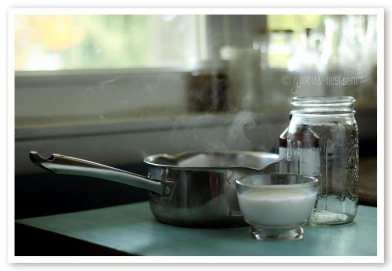 coconut yogurt recipe (11 of 20)