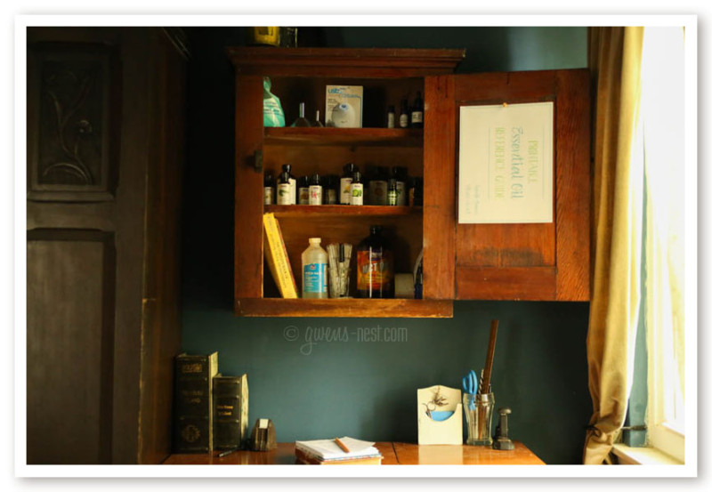 Essential Oil Storage A Peek Inside my Cabinet Gwens Nest