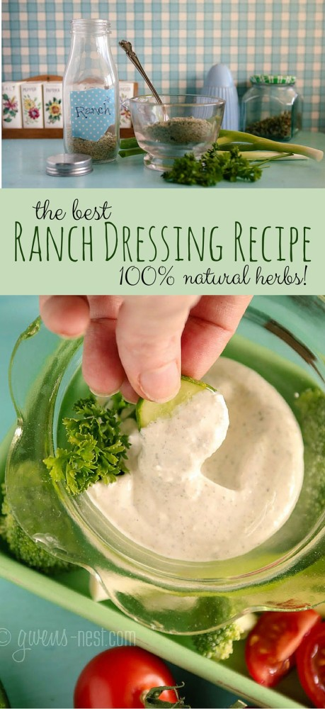 The BEST ranch dressing recipe! Even the mix is awesome as a dry seasoning. LOVE this stuff!