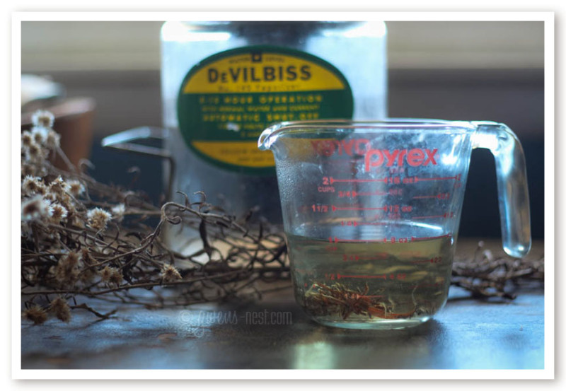 herbal remedies for nasal congestion (25 of 62)
