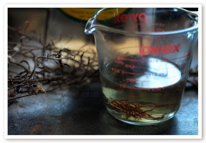 herbal remedies for nasal congestion (26 of 62)