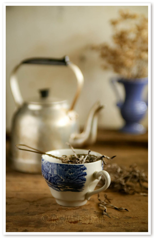 herbal remedies for nasal congestion (51 of 62)