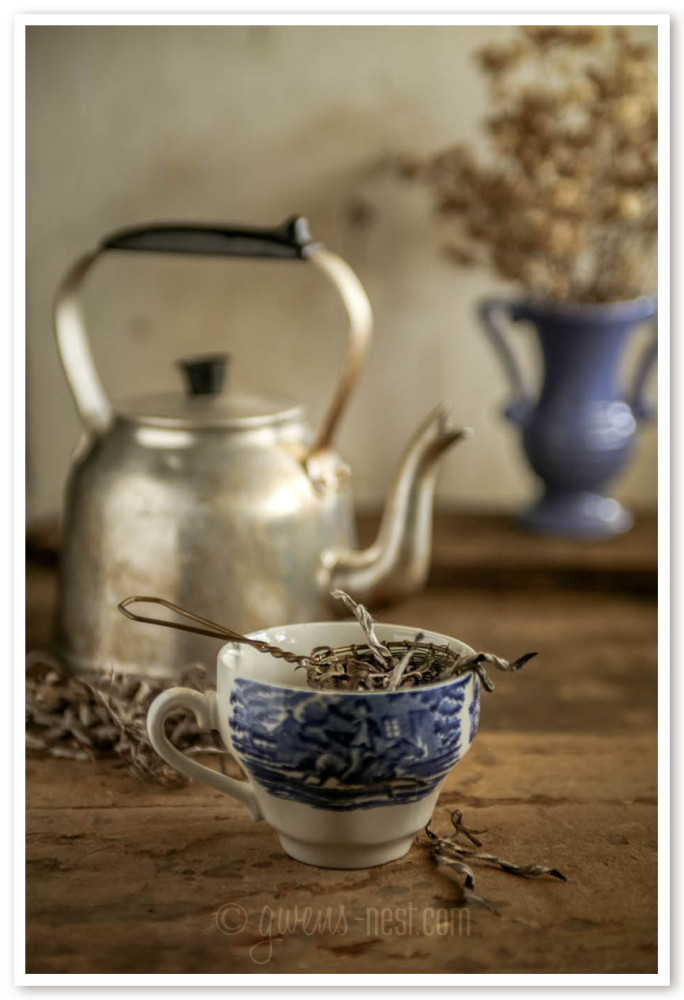 herbal remedies for nasal congestion (53 of 62)