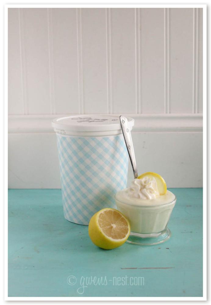 lemon yogurt family size (11 of 14)