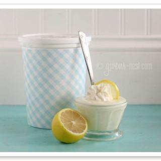 lemon yogurt family size (12 of 14)