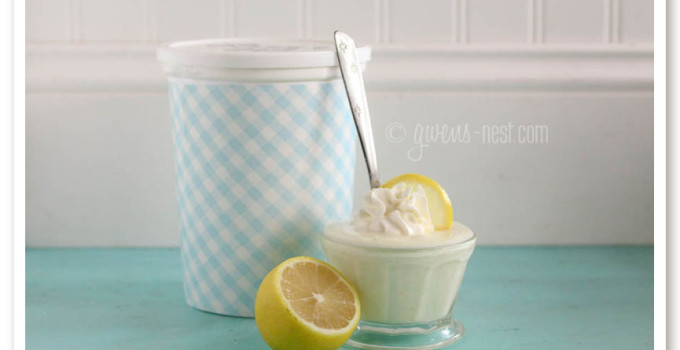 Lemon Yogurt Recipe- Family Size!