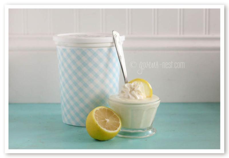 Lemon Yogurt Recipe- Family Size!