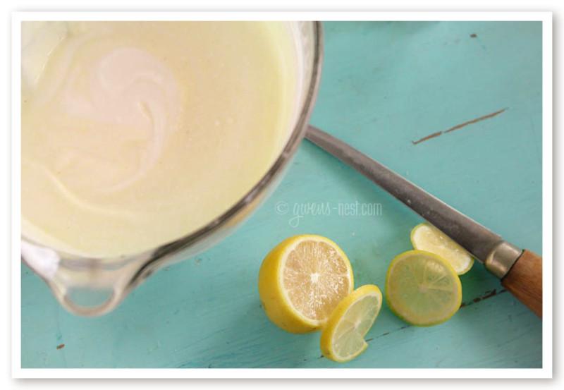 lemon yogurt family size (8 of 14)