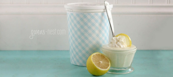 THIS lemon yogurt is my life. It tastes like lemonade pie, but it's high in protein and sugar free. SO MUCH YUM! Here's how to make a whole quart!