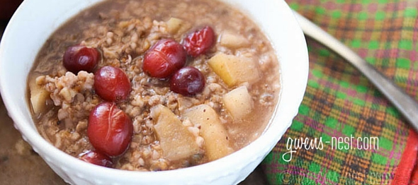 Apple cranberry steel cut oatmeal recipe- SO AMAZING!!! (You can use regular oats too) A THM E or crossover breakfast