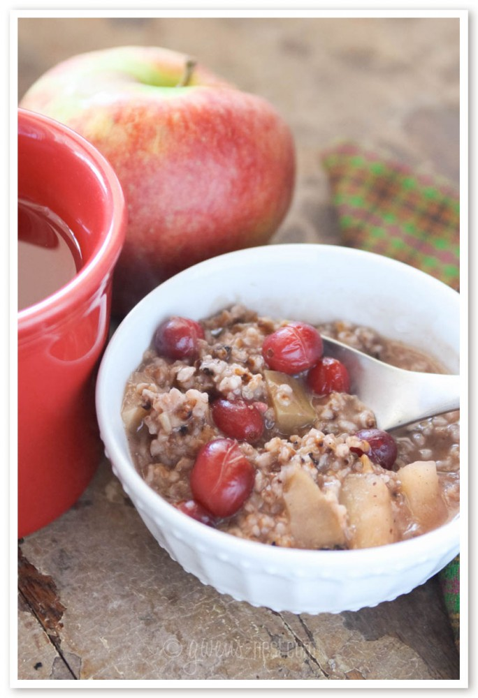 steel cut oatmeal recipe (13 of 13)