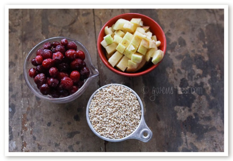 steel cut oatmeal recipe (2 of 13)