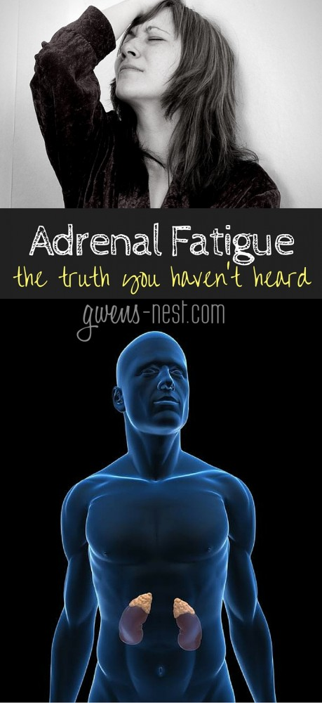 Dr. Rob answers all of my questions on adrenal fatigue, and BLEW my mind...here's the truth you haven't heard about adrenal fatigue.