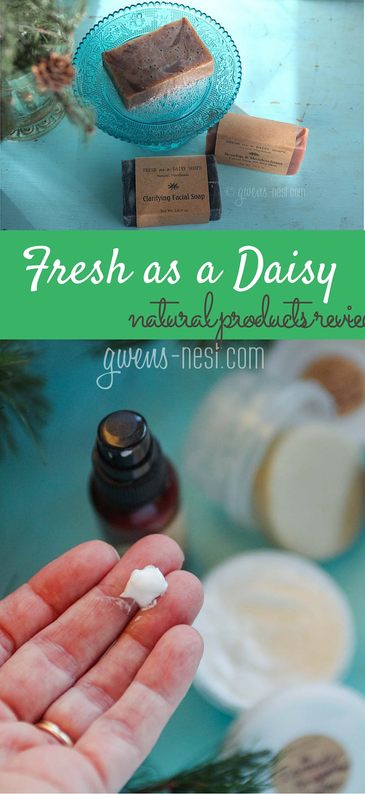 I LOVE homemade soaps and natural beauty products...Fresh as a Daisy makes great stuff.