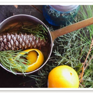 natural home scent pot (5 of 7)