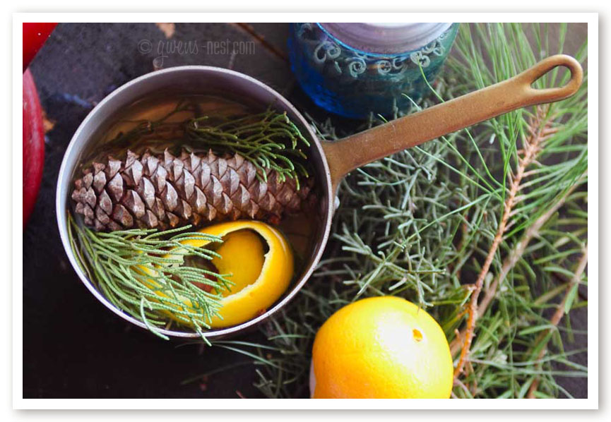 natural scents to fill your home or give as gifts...SO EASY!