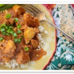 butter chicken recipe (3 of 3)
