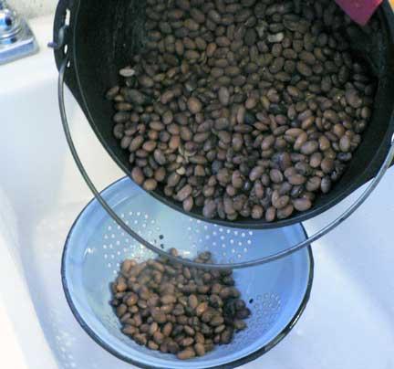 Burned-beans%20(2).jpg